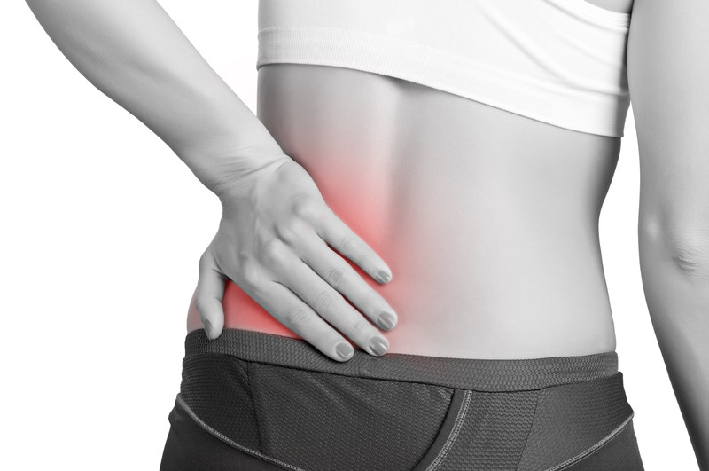 pain in the lower back and hips