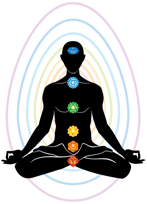 Human energy fiels and the chakras