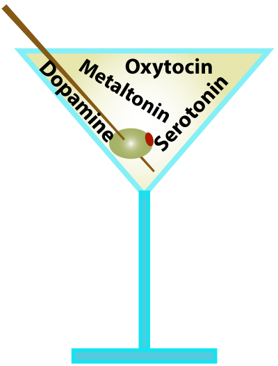 neural cocktail of hormones
