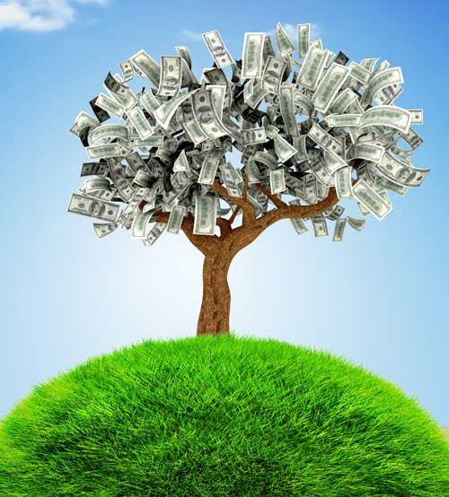 imagining the money tree