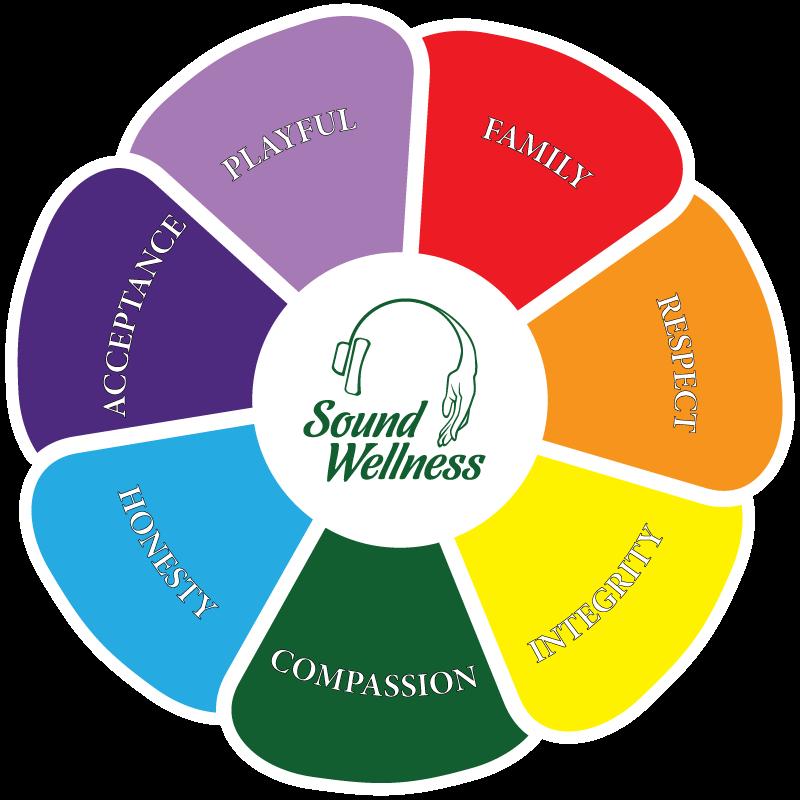 viziune wellness